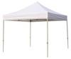 Canopy Shelter,10x10 Ft -- 5NY99 - Image