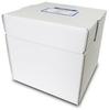 RPS 250um 20x20cm (25 Plates/Box) -- 50011
