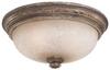 5319-299 Flush Mounts-Bowl Style -- 345818