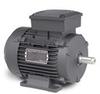 Baldor Aluminum IEC Frame Motors -- MM5550-5