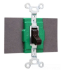 Double Throw AC Switch -- 1276 - Image