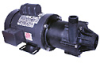 Ryton PPS Magnetic Drive Pump, 53 GPM, 230/460 VAC -- GO-07085-05 - Image