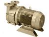 Single Stage Motor Mounted Liquid Ring Vacuum Pumps -- DV0100B-M