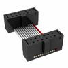 Rectangular Cable Assemblies -- FFSD-06-D-11.00-01-F-N-ND -Image