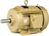 Definite Purpose AC Motors -- CEWDM3615T