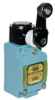General Purpose Limit Switch, Series WL; Side Rotary; Single Pole Double Throw,Double Break; Overtravel; Weld-immune; Neon lamp(AC type) -- SZL-WLA-A-LLE