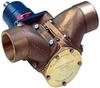 Multipurpose Compact Bronze Imeller Pump -- FB-3000 - Image