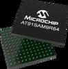 MCU/MPU with Connectivity -- AT91SAM9R64 - Image