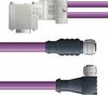 LAPP UNITRONIC® PROFIBUS® D-Sub Y-Cordset to Node Module - 5 positions female M12 straight and 5 positions female M12 90° to 9 positions D-sub node - Violet PVC - Stationary - 10m -- OLFPB4110150S10 -Image