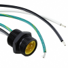 Circular Cable Assemblies -- 889-2355-ND -Image