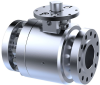 Accuseal® Critical Service Valves -- Pressure Class 150-4500 - Image