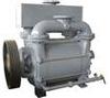 Single Stage Liquid Ring Vacuum Pump -- LR1A1300