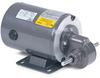AC Gear Motors -- GC24003 - Image