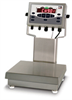 Bench Scale -- RIC-CW90X