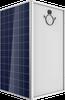 72 Cell Multicrystalline PV Module -- TALLMAX-PE14A
