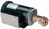Close-Coupled Industrial Gear Pumps -- GO-70738-62