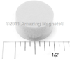 Color Disc Magnets -- D250D-WHITE-Image