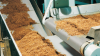 Siegling Transilon Conveyor Belts And Processing Belts -- Tobacco -Image