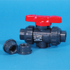 Duo-Block PVDF Valve with Threaded Ends -- 17276
