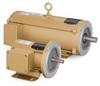 EC Gold Series AC Motor
