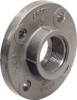 "CPVC SCH 80 THREADED FLANGE 1/2"" -- IBI455671"