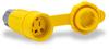 20A Electrical Connector w/cap: watertight, straight blade, NEMA 5-20 -- 15W33BRY