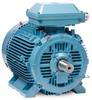 Inverter/Vector AC Motors -- EMM28754-PP