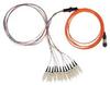 FIS Ribbon Fan-Out Assembly -- RF-3-BU-P-S-3-FIS-12 - Image