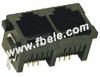 PCB Jack -- FB-22-52 5225 2 Ports 180º (6p,8p) - Image