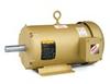 Baldor Rolled Steel/Cast Iron IEC Frame Motors -- EMM3559