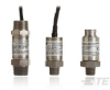 Intrinsically Safe Pressure Sensors / Transmitters / Transducers | AST4400 -- AST4400