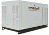Standby Generator,22 LP/22 NG -- 6FDN0