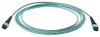 Fiber Optic Patch Cord -- FPCPMTP50G3M10FN -- View Larger Image