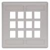 Datacommunication Face Plate -- IFP212OW - Image