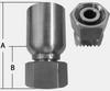 SHF43 SERIES - STAINLESS STEEL DIN 24° LIGHT -- SHF43-06-12L - Image