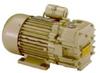 Oil Free (dry) Rotary Vane Vacuum Pumps -- RVD004L
