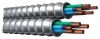 Armored Cable -- 18BG-42-500