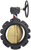 Butterfly Valve - Ductile Iron, 150 PSI, Stainless Steel Disc -- LD-1022 Large Diameter - Image