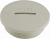 Nickel-Plated Brass PG Thread Plugs -- 6700521
