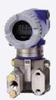 Model IGP20 Gauge Pressure Transmitter -- View Larger Image
