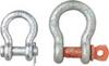 Anchor Shackle,W/Screw Pin,6333Lb -- 3YCJ1