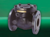 FM469 Swing Check Valve -- View Larger Image