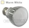 PAR20 LED Bulbs Globe, 5W - Warm White -- LB-GL-P20-G-WW