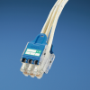 QuickNet Switch Harnesses : Category 6 UTP -- QPPCCWAB3M