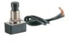 Pushbutton Switches -- 76010PW - Image