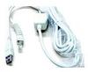 USB Cable -- CBLP-ZB-USB-B - Image