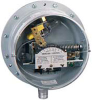 Gas Pressure/Differential Pressure Switch -- Series PG