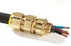 E1W SOLO Cable Gland - Image
