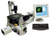 Fluorescence Imaging System -- EasyRatioPro