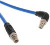 Circular Cable Assemblies -- A141240-ND -Image